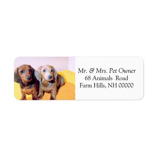 Cute Dachsund Puppies Return Address Mail Stickers