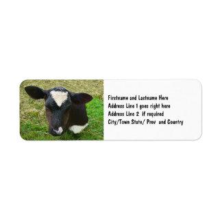 Cute Dairy Cow Calf Return Address Label