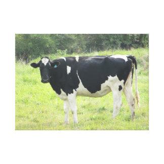 Cute Dairy Cow Photo Wall Canvas Art