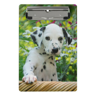 Cute Dalmatian Dog Puppy Portrait Pet Photo on a Mini Clipboard