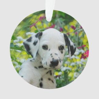 Cute Dalmatian Dog Puppy Portrait - round acrylic