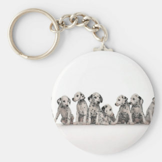 cute dalmation puppies pupy pup pups dog dogs basic round button key ring