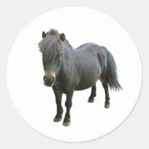 Cute Dartmoor Pony Round Stickers
