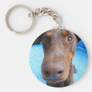 Cute doberman closeup key ring