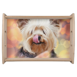 Cute Dog A1 Serving Tray