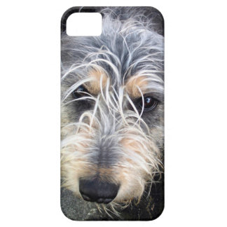 Cute dog case for the iPhone 5