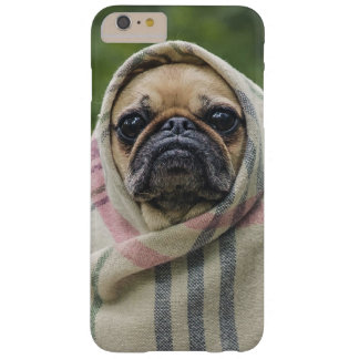 Cute Dog Close-Up phone cases