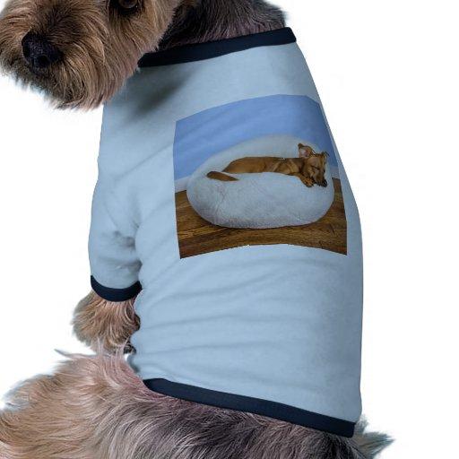 Cute dog pet clothing