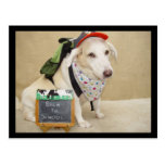 Cute Dog Funny Back to School Post Card