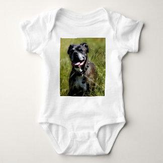 Cute dog in grass baby bodysuit