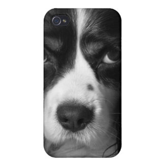 Cute Dog iPhone... Not just for Christmas. iBone iPhone 4 Covers