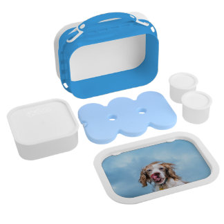 Cute Dog Lunchbox