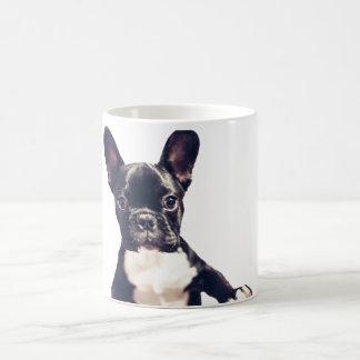 Cute Dog Mugs