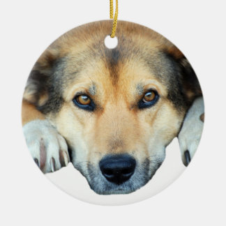Cute dog on any color background christmas ornament