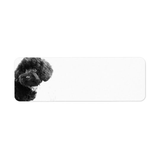 Cute Dog Puppy Black and White l Photography Return Address Label