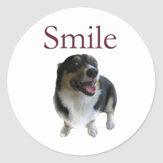 Cute Dog Smile Classic Round Sticker