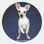 Cute Dog Up-Sticker.