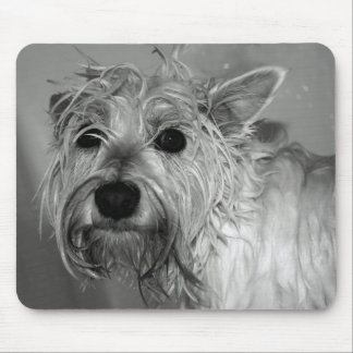 Cute Dog - Westie (West Highland Terrier) Mouse Mat
