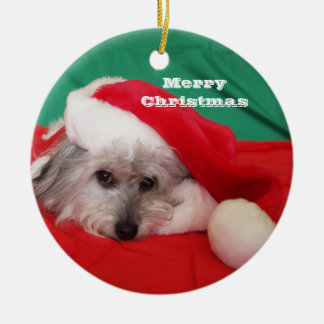 Cute Dog with Hat Christmas Ornament