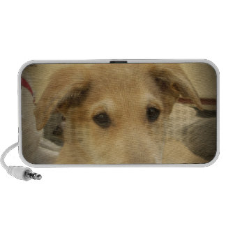 Cute Dogs and Puppies Mans second Best Friend.png Mini Speaker