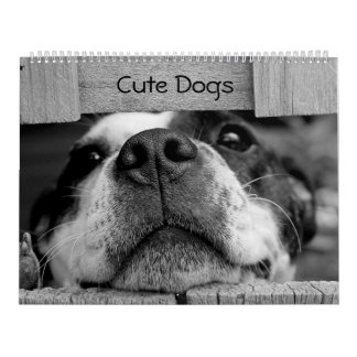 Cute Dogs Calendar