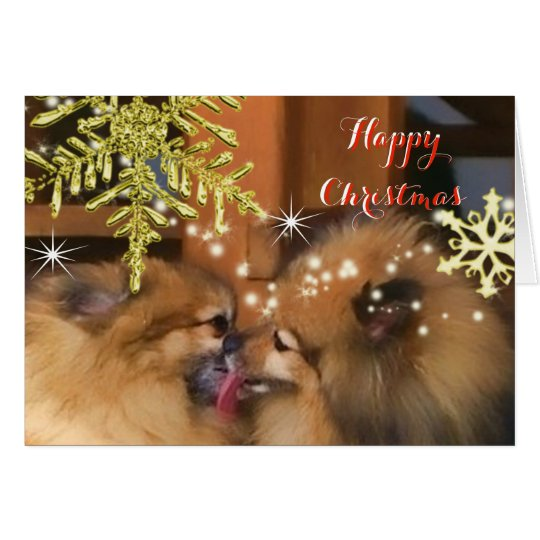 Cute Dogs Christmas Kiss Snowflake Picture Card