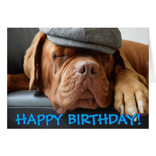 Cute dogue de bordeaux photo birthday card