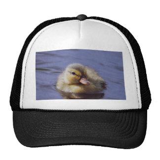 cute duckling hat
