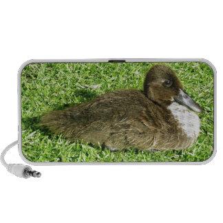 Cute Ducky Portable Speaker