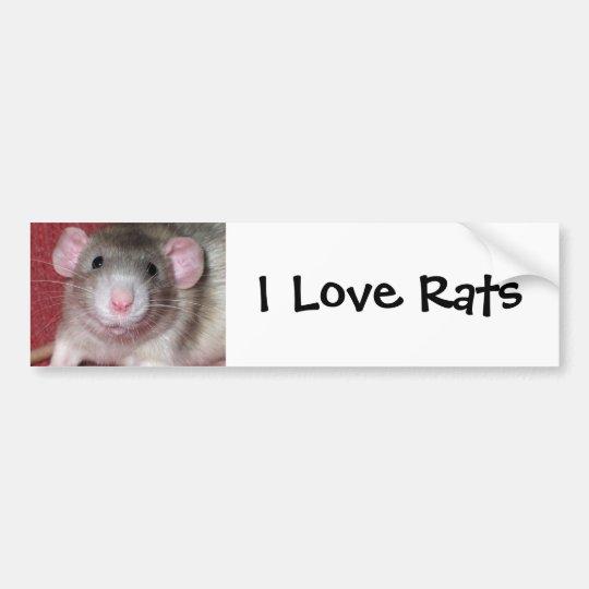 Cute Dumbo Rat Bumper Sticker