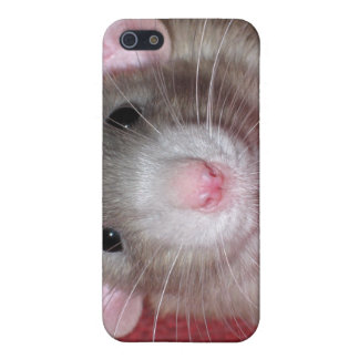 Cute Dumbo Rat Case For iPhone 5/5S