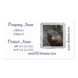 Cute Dwarf Mongoose Business Card Template