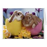 Cute Easter Bunny inside Eggs