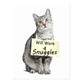 Cute Egyptian Mau Cat Advertising for Snuggles Postcard