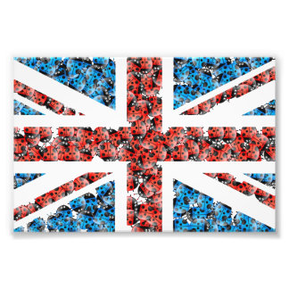 Cute England flag Cartoon Ladybugs Insects funny Photographic Print