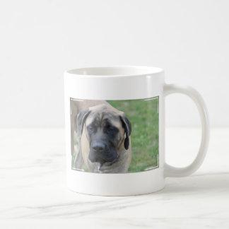 Cute English Mastiff Basic White Mug