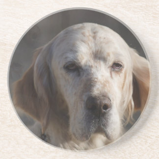 Cute English Setter Coaster