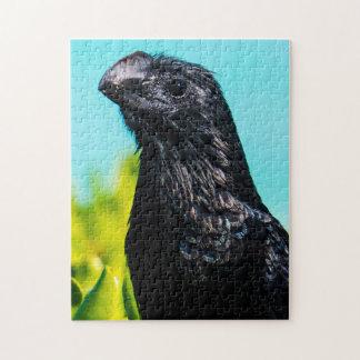 Cute Exotic Bird Jigsaw Puzzle
