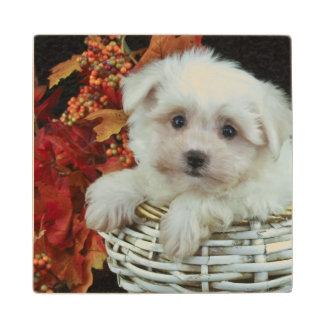Cute Fall Puppy Wood Coaster