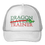 Cute Fantasy Dragon Slayer Trainer