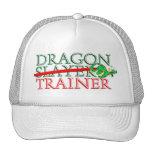Cute Fantasy Dragon Slayer Trainer Mesh Hats