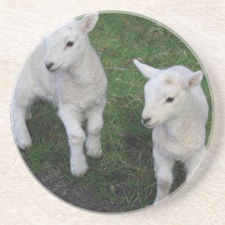 Cute Farm Ranch Baby Twins Sheep Lamb Beverage Coasters