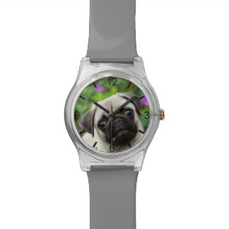 Cute Fawn Colored Pug Puppy Dog Face -- dial-plate Watch