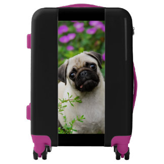 Cute Fawn Colored Pug Puppy Dog Photo - Suitcase