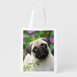 Cute Fawn Colored Pug Puppy Dog Portrait reuseable
