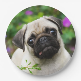 Cute Fawn Pug Puppy Dog Portrait, Happy Party 9 Inch Paper Plate