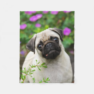 Cute fawn pug puppy fleece blanket