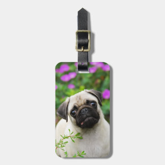Cute fawn pug puppy luggage tag
