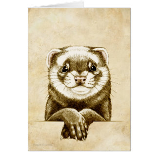Cute Ferret Card