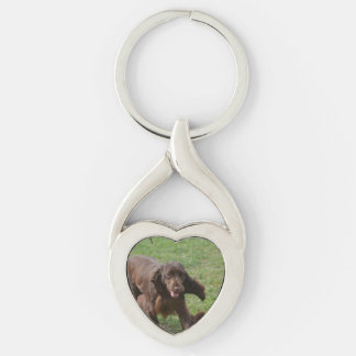 Cute Field Spaniel Silver-Colored Twisted Heart Key Ring